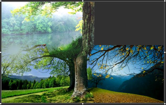 Описание MS Image Composite Editor
